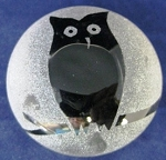 Frosted paperweight owl black