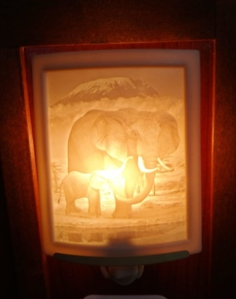 Curved Nightlight, Elephant and calf, etched porcelain