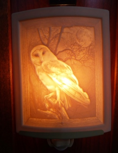 Curved Nightlight, Owl, etched porcelain