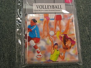 Scramble Squares - Volleyball