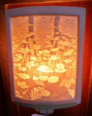 Curved Nightlight, Still Reflections, etched porcelain